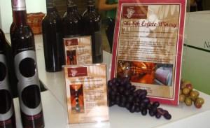 Wine Festival - 3
